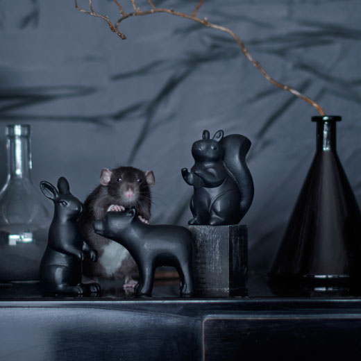 A playful decoration set consisting of a squirrel, bear and a rabbit.