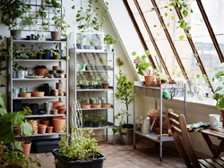 A large greenhouse furnished with grey shelves for plant pots, a glass-door cabinet for seedlings and a table for repotting plants.