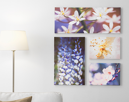 A living room wall, decorated with four pictures, two large and two small, with blue and pink flower motifs.
