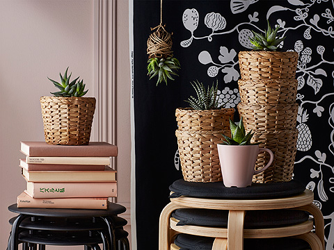 Plant pots made of woven water hyacinth with green plants.