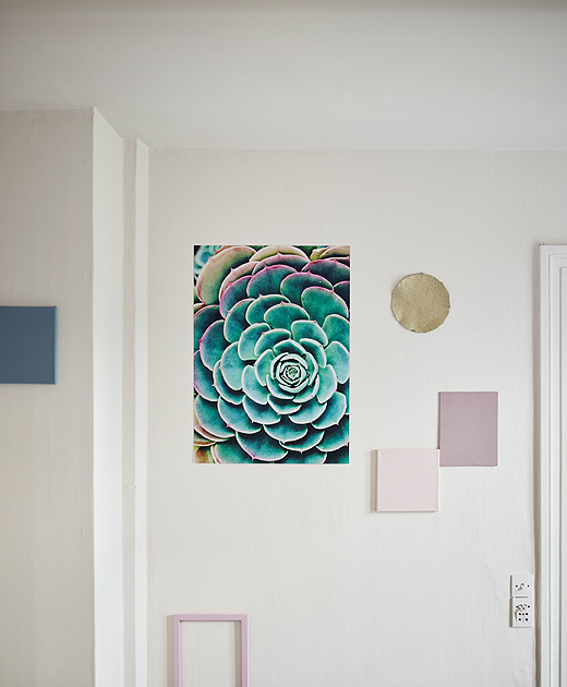 A white wall with a poster featuring a succulent plant in turquoise and pink tones.