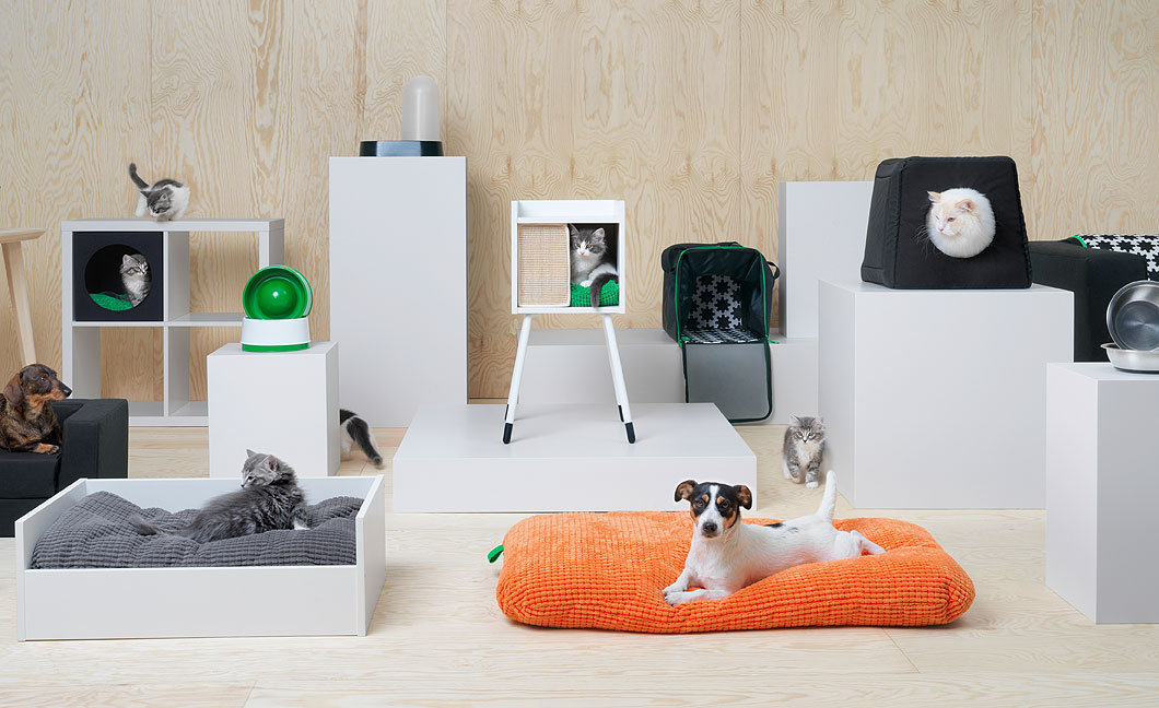 Many cats and dogs enjoying and playing with their pet accessories.