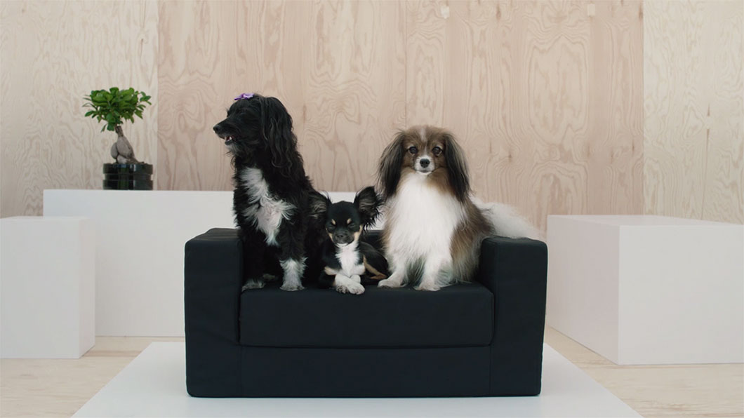 animalerie accessoires pour chat et chien ikea. Black Bedroom Furniture Sets. Home Design Ideas