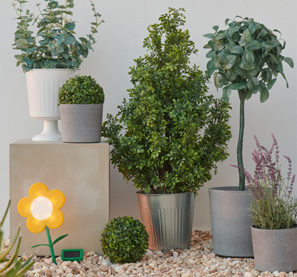 Several different plant pots in white and gray with plants sticking out, and a flower shaped solar light in the ground.