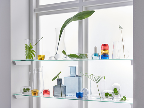 A window with glass shelves in front and several colorful glass vases and plants on top.