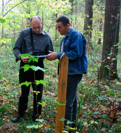 Forestry specialist measuring growth