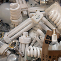 Lightbulbs collected to be recycled