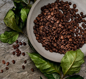 Close up of coffee beans in a ceramic bowl surrounded by leaves.