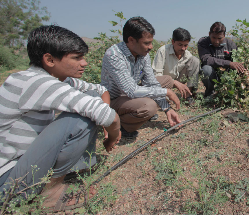 Cotton farmers kneeling down in a cotton field inspecting water tubes.