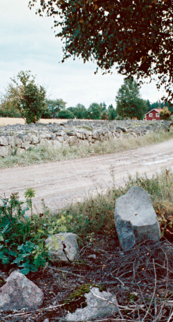 Image of a small road in Småland, Sweden