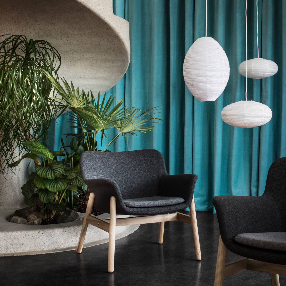 An ergonomic designed armchair with a grey cover and clear lacquered solid ash legs, shown in front of turquoise drapes and three white rice paper pendant lamps.