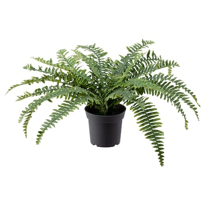 FEJKA Artificial potted plant, in/outdoor fern, 15 cm
