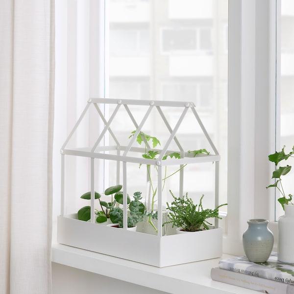 SENAPSKÅL Decoration greenhouse, in/outdoor white, 34 cm