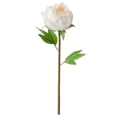 SMYCKA Flor artificial, Peonía/blanco, 30 cm
