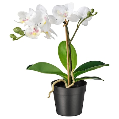 FEJKA Artificial potted plant, Orchid white, 9 cm