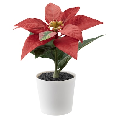 FEJKA Artificial potted plant with pot, in/outdoor/Poinsettia red, 6 cm