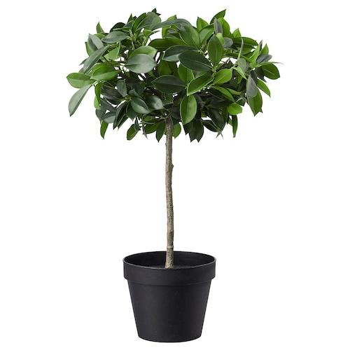FEJKA tumbuhan tiruan berpasu dalam/luar /Beringin batang 12 cm 44 cm