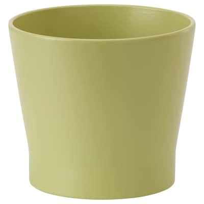 PAPAJA Pasu, hijau, 12 cm