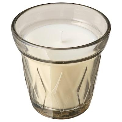 VÄLDOFT Lilin wangi dalam gelas, Rubarb bunga eder/kuning air, 8 cm