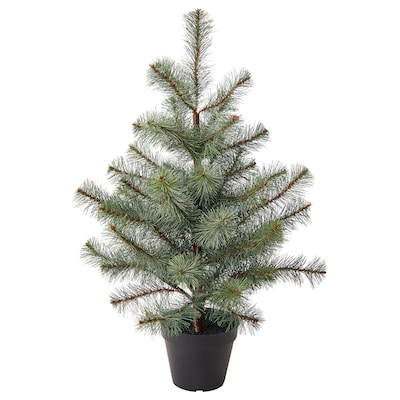 VINTER 2021 Artificial potted plant, in/outdoor/Christmas tree green, 12 cm