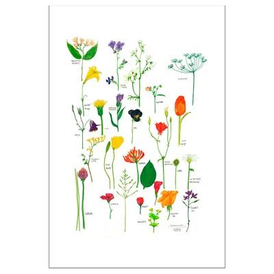 BILD poster Bloemen in bloei 61 cm 91 cm