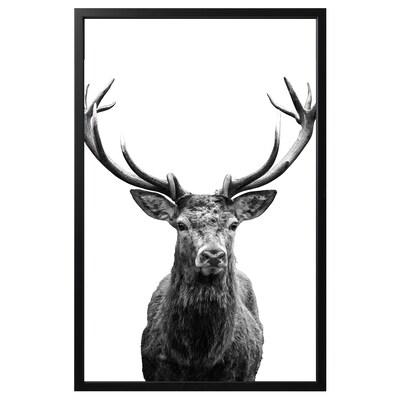 BJÖRKSTA foto met lijst Hoorns/zwart 118 cm 78 cm