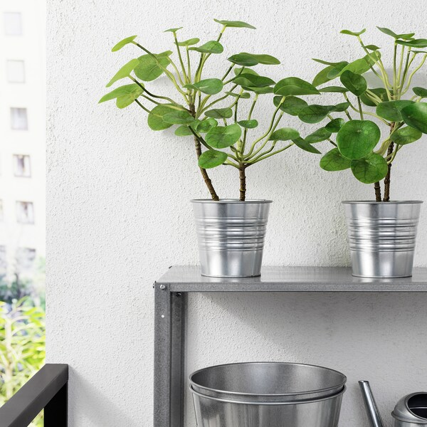 FEJKA kunstplant binnen/buiten Pannenkoekenplant 12 cm 40 cm