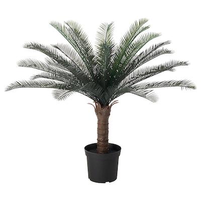 FEJKA Kunstplant, binnen/buiten cycaspalm, 19 cm