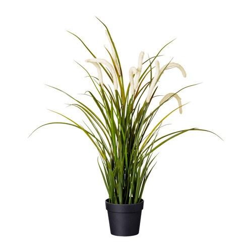 Fejka kunstplant ikea for Plantas de interior ikea