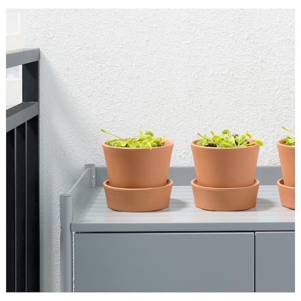 GRÖNSKAN Potplant, vleesetend/diverse soorten, 12 cm