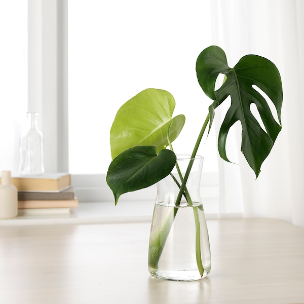 KARAFF Karaf, helder glas, 1.0 l