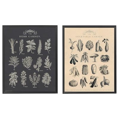 KNOPPÄNG Lijst met afbeelding, tuin, 40x50 cm