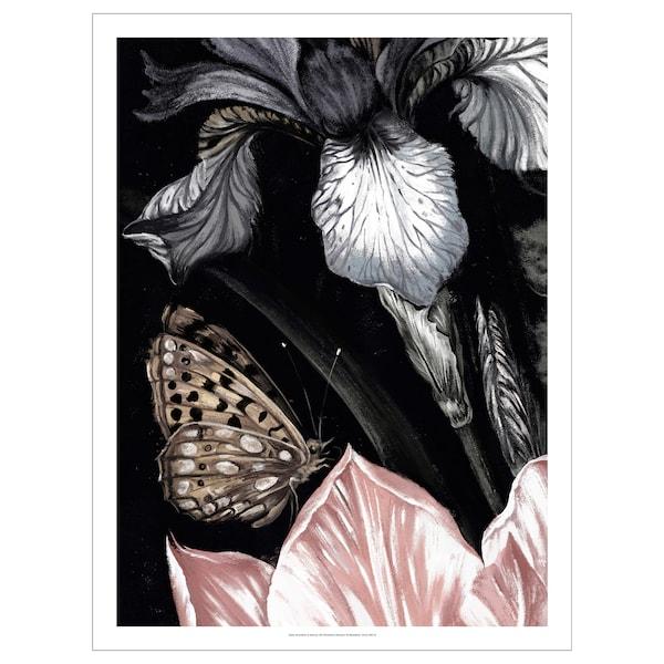 PJÄTTERYD afbeelding zonder lijst Vlinder 50 cm 70 cm