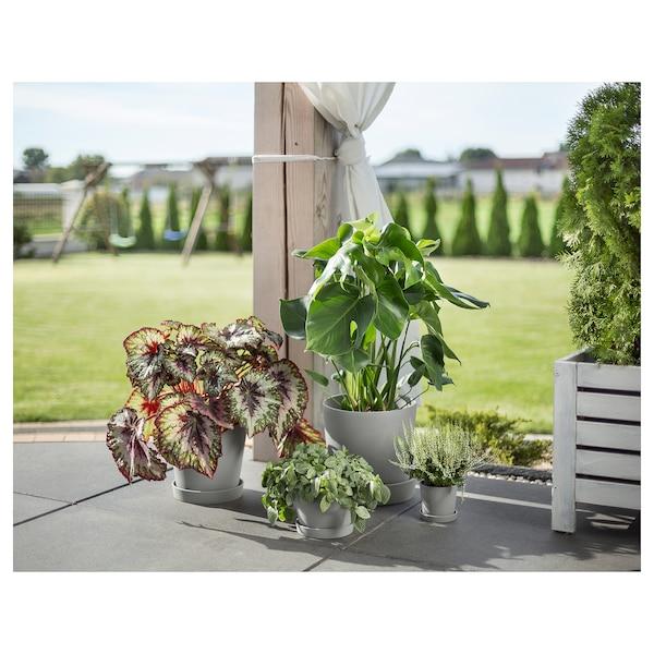 SMULGUBBE Bloempot met schotel, betonpatroon/buiten, 15 cm