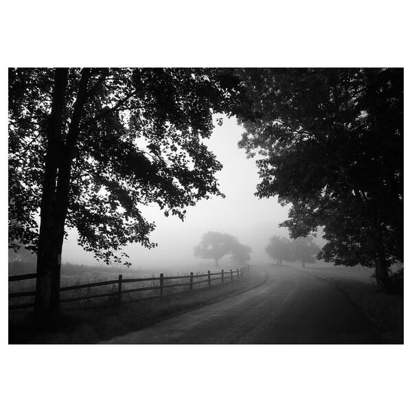 BJÖRKSTA Bilde, tåkete landevei, 200x140 cm