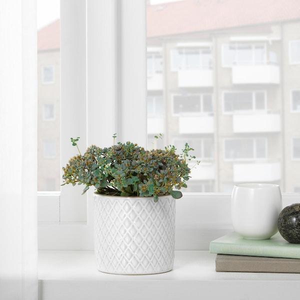 CHIAFRÖN Blomsterpotte, hvit, 9 cm