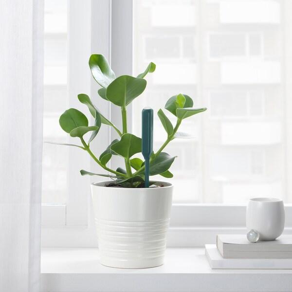 CHILIPULVER Fuktsensor for planter, grønn