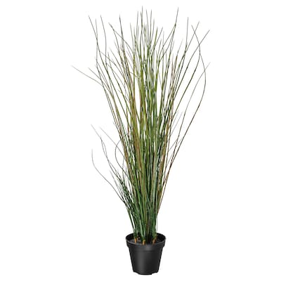 FEJKA Kunstig potteplante, gress, 17 cm