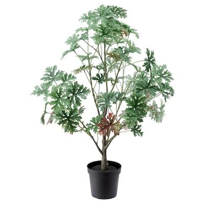 FEJKA Kunstig potteplante, inne/ute Pelargonia, 15 cm