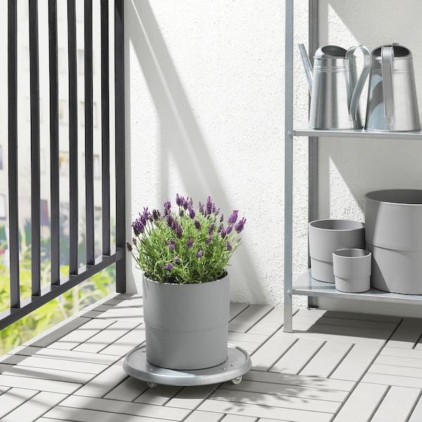 NYPON Blomsterpotte, inne/ute grå, 19 cm