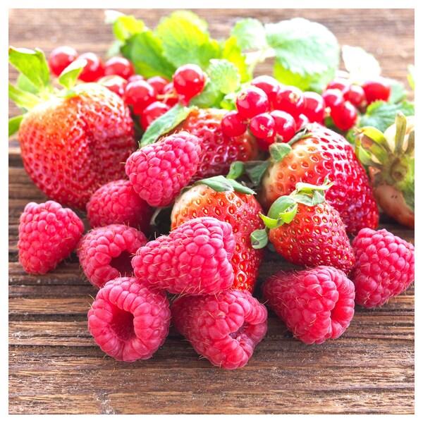 SINNLIG duftlys i glass duft: hagebær/rød 9 cm 40 hr