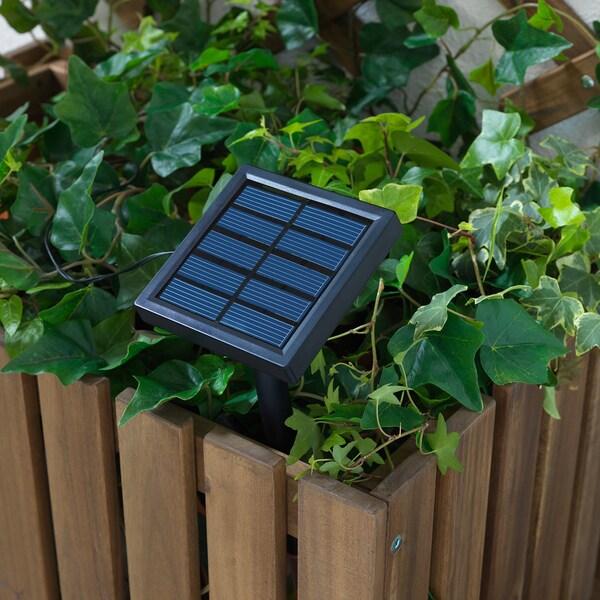 SOLARVET LED-lyslenke med 24 lys, utendørs solcelledrevet /ball hvit