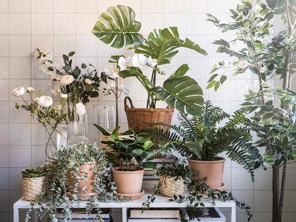 FEJKA Artificial potted plant, indoor/outdoor hanging/eucalyptus, 9 cm