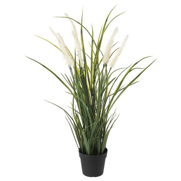 FEJKA Plante artificielle en pot, intérieur/extérieur décoration/herbe, 9 cm