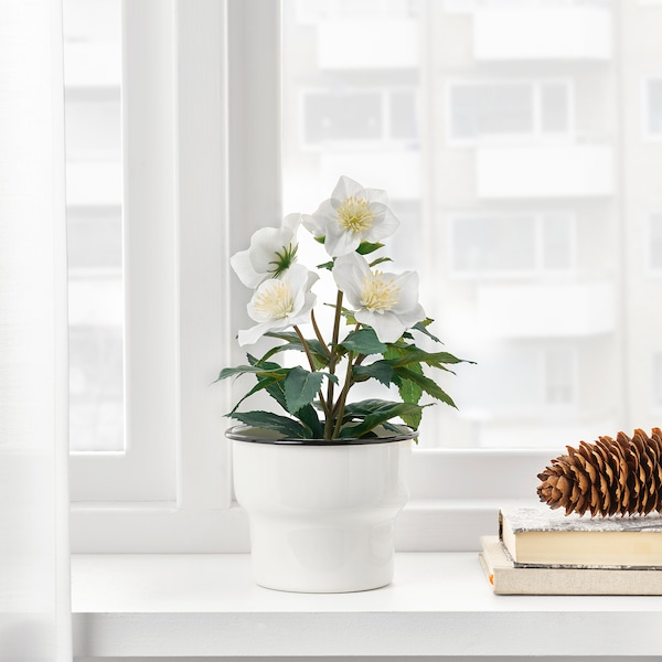 FEJKA Plante artificielle en pot, intérieur/extérieur rose de noël, 12 cm