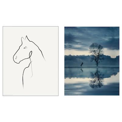 BILD Image, Cheval, 40x50 cm