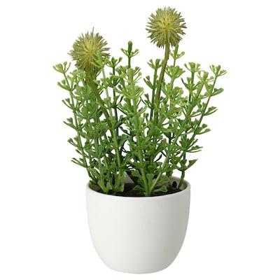 FEJKA Plante artificielle en pot, intérieur/extérieur herbe, 6 cm