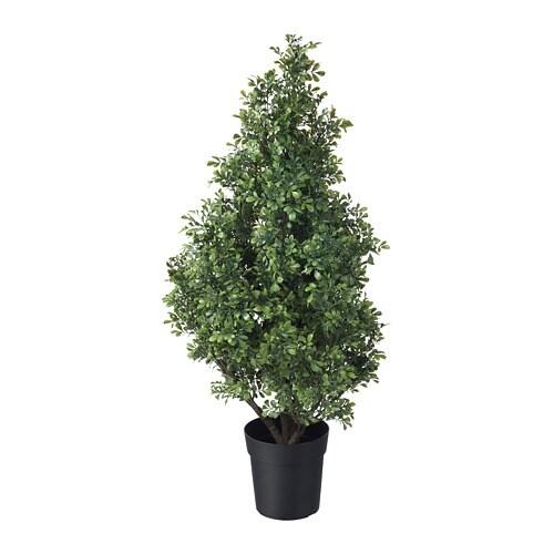 FEJKA Mākslīgie augs, 15cm