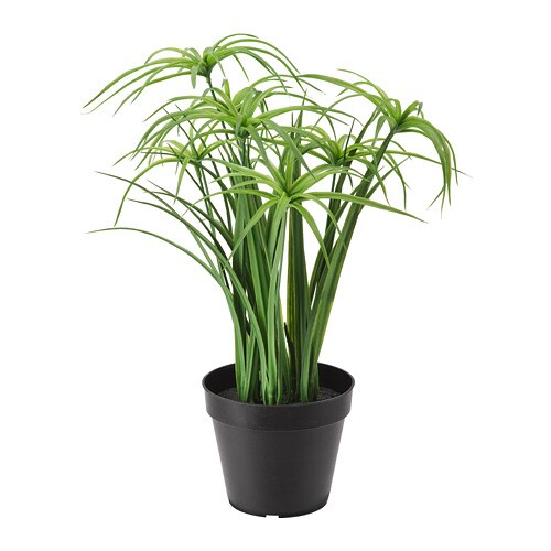 FEJKA Mākslīgie augs, 12 cm