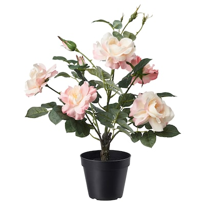 FEJKA Sztuczna roślina doniczkowa, do wewnątrz/na zewnątrz/Róża różowy, 12 cm